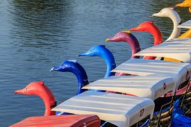 image of pedal  - A row of colorful is pedal boats - JPG