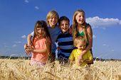 Children In Barley Field