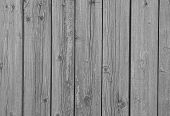 Wooden Siding