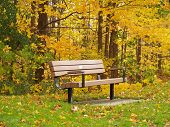 Bench_Fall_Colors