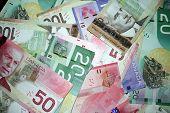 Canadian Money 3