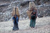 tibetan girls with basket