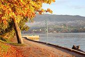 Stanley Park Seawall Autumn, Vancouver