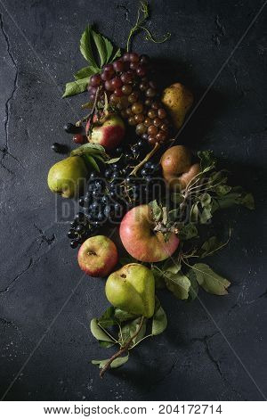 poster of Variety of autumn fruits ripe organic apples, three kind of grapes, pears with leaves over dark texture background. Top view with space. Food background