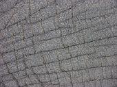 Elephant Skin Leather
