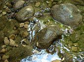 Creek In Stones