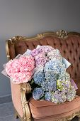 Bouquets Of Hydrangeas Lying On Vintage Sofa. Small Beautiful Bouquet Of Hydrangea Flowers. Floral S poster