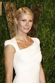 WEST HOLLYWOOD, CA - FEB 26: Gwyneth Paltrow at the Vanity Fair Oscar Party at Sunset Tower on Febru
