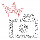 Mesh Camera Flash Polygonal Icon Vector Illustration. Carcass Model Is Based On Camera Flash Flat Ic poster