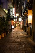 Night alley.Osaka.Japan.Area Dotonbori.2008 year