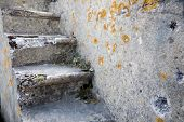Old wall and staircase become overgrown with a moss
