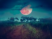Landscape At Night Time In The Forest With Fogy And Darkness Sky Super Blood Moon In The Background, poster
