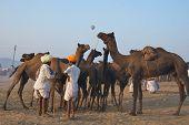 Pushkar, India - November 2011