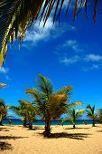 Guajataca Beach, Pr, Usa