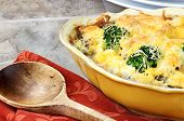 Cheesy Broccoli Casserole