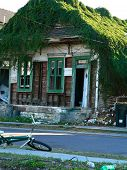 stock photo of katrina  - Overgrown house in New Orleans LA USA after Hurricane Katrina - JPG