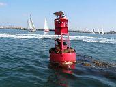 Spinnaker Yacht Racing Ocean San Diego California