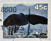 NEW ZEALAND - CIRCA 1988: A stamp printed in New Zealand shows The tail of a whale at Kaikoura circa