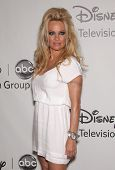 LOS ANGELES - JUL 27:  Pamela Anderson ABC All Star Summer TCA Party 2012  on July 27, 2012 in Bever