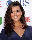 LOS ANGELES - AUG 03:  COTE de PABLO Summer TCA Party 2011 - CBS / SHOWTIME / CW   on August 03, 201