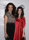 LOS ANGELES - JAN 10:  ANDIE MacDOWELL & ERICA DASHER ABC All Star Winter TCA Party 2012  on January