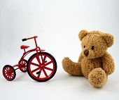 Bear And Tricycle