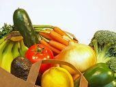 Grocery Bag  Closeup