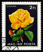 Postage stamp Hungary 1982 Diorama, Rose Flower