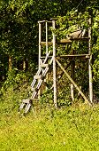 Hunting Stand