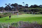 Monterey Golf