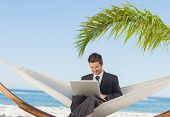 Smiling businessman using laptop and sitting in hammock at beach