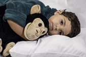 foto of stuffed animals  - A child sleeping hugging on a stuffed animal - JPG