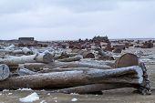 Drums On Arctic Coast