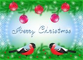 Christmas Card With Bullfinches