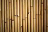 pic of bamboo  - Close up Bamboo background  - JPG