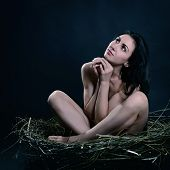 Young naked woman sitting in nest, image toned and noise added
