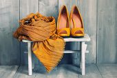 stock photo of orange blossom  - This is photo of orange shoes and scarf - JPG