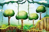 pic of hilltop  - Illustration of the trees in the forest under the rays of the sun - JPG