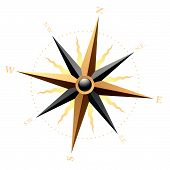 picture of compass rose  - Vector illustration of a wind rose on white - JPG