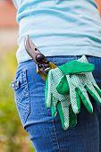 Pruner And Gloves In Pocket