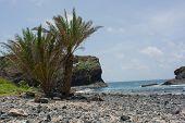 Senegal, isle de la Madeleine