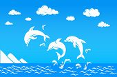 White Dolphins Jumping Over Sea