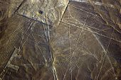 picture of geoglyph  - Condor aerial view of Nazca Lines  - JPG