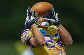 VIENNA,  AUSTRIA - MAY 26 WR Laurinho Walch (#82 Vikings) catches the ball during the EFL football g