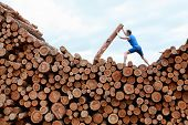 man on top of large pile of logs, pushing heavy log - training