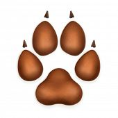 Dog paw, vector