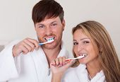 They Brushed Teeth Together