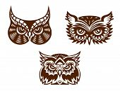 Collection of wise old owl faces