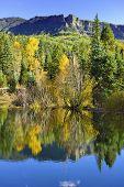 Colourful Aspens Of Colorado Reflecting In A Lake During Foliage Season