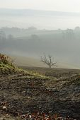 Misty Countryside Near Aurndel. England